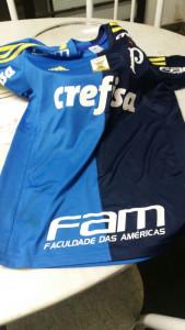 Camisa oficial da S.E. Palmeiras que está sendo leiloada pelo Dal Bon FC